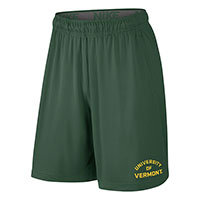 Nike Spellout Fly Short 2.0
