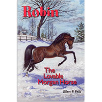 MHF Robin: The Lovable Morgan Horse