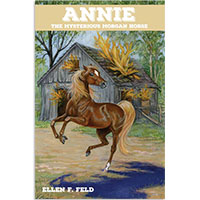 MHF Annie: The Mysterious Morgan Horse