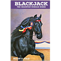 MHF Blackjack: The Champion Morgan Horse